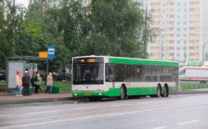 Предрейсовый медосмотр водителей в Краснодаре